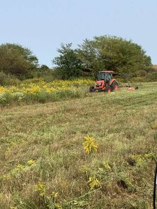 mowing for food plots