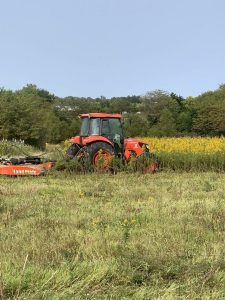 Brush hogging in Missouri is the most common form of eliminating brush for hunting, farming, pasture, Conservation Reserve Program (CRP) maintenance, and land development as well as a variety of other uses.