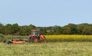 brush hogging tractor pulling mower